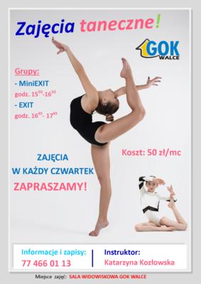 MINIEXIT_storna.png
